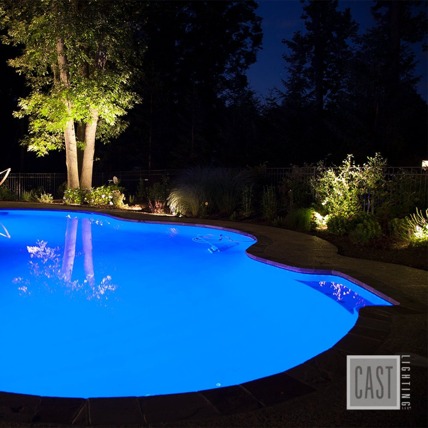 Backyard Pool Landscape Lighting