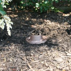 CAST Craftsman Series Bronze Ground Lights